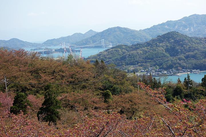 伯方島-大島大橋